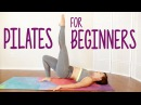 Total Body Pilates 20 Minute Tone Shape Legs Butt Abs Beginners Home Workout Flexib