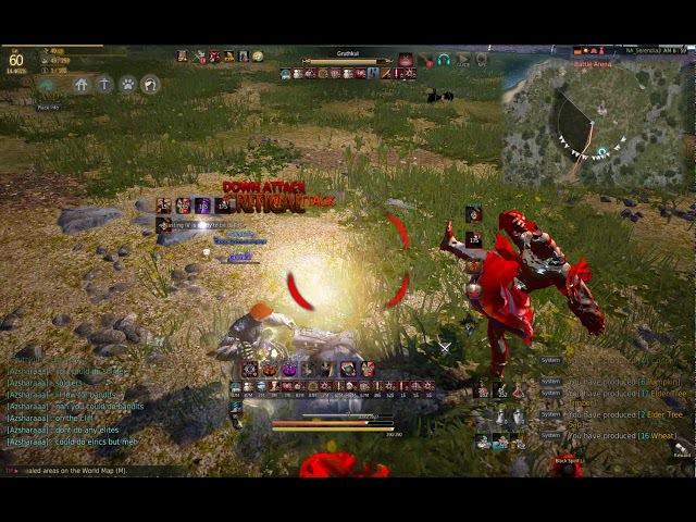 Black Desert Zerk vs Striker