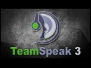 Инструкция по Team Speak