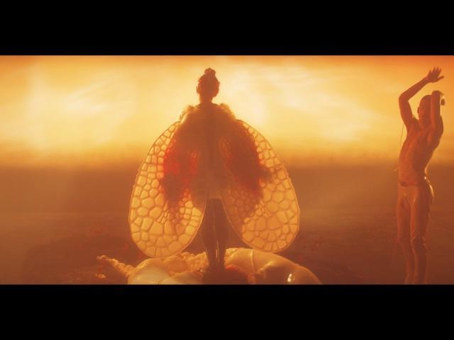 Björk arisen my senses