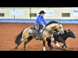 A Judge's Perspective 2017 AQHA World Junior Working Cow Horse World Champion
