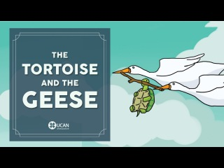 Learn English Listening   English Stories - 13. The Tortoise and the Geese