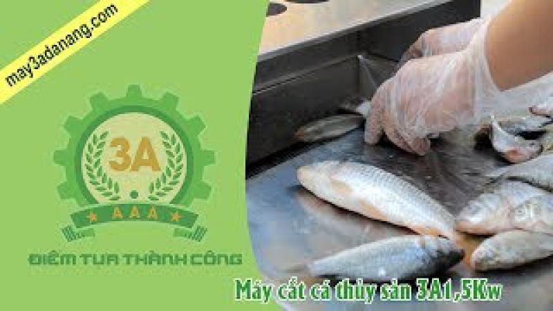 Máy cắt thái cá thủy sản, Máy cắt cá mồi nuôi thủy hải sản 3A1,5Kw