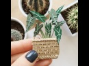 """Handmade CardsPosters on Instagram: """"I noticed many don't see the story. So I show alocasia here 🍃 Love at first sight, definitely 🙌🏻 - Lissovacra..."""