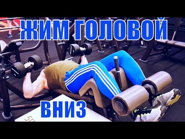 Жим гантелей головой вниз на обратно наклонной скамье Юрий Спасокукоцкий
