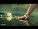 Антистресс ТВ - Очень Мощная Музыка, Которую Можно Заслушаться. Самая Красивая Подборка ♥