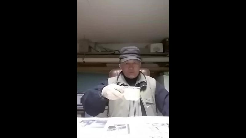 Жоламан Койлыбаев - Live