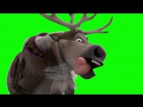 Footage on a green background reindeer. Футаж на зеленом фоне Северный олень._HD.mp4
