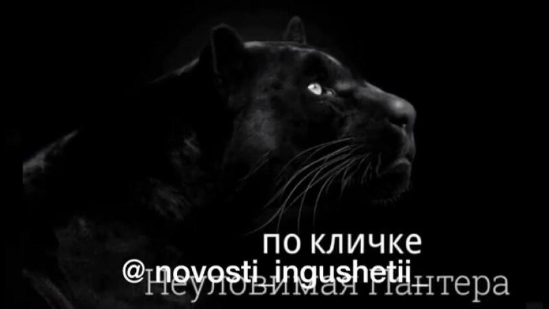 Ингушка против НКВД