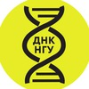 Дни научного кино НГУ // ДНК НГУ