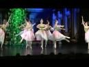 Отрывок балета Щелкунчик