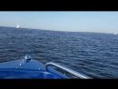 На катере по финскому заливу