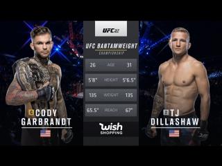 UFC 217 Легчайший вес, Коди Гарбрандт — Ти Джей Диллашоу