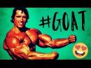 Arnold Schwarzenegger - THE GREATEST - Motivational Video