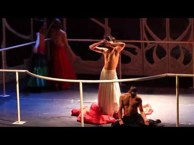 Служанки (Je sui malade - Cannon Ball) [МТЮЗ, 24.07.2015]
