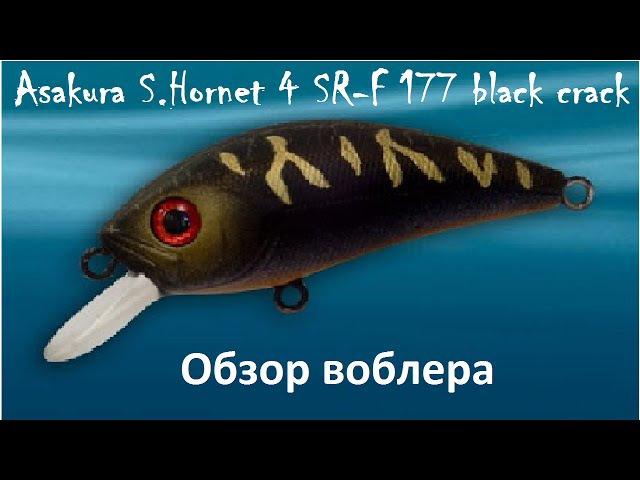 Воблер Asakura S.Hornet 4 SR-F 177 black crack
