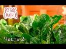 10 блюд из шпината. Часть 2 — Все буде смачно. Сезон 5. Выпуск 24 от 19.11.17
