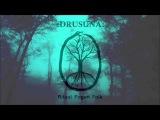 DRUSUNA (ritual paganfolk) - Ritual Shaman