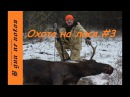 Охота на лося. 3. 18