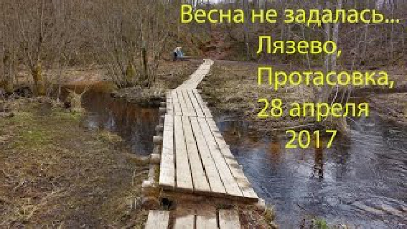 Лязево, Протасовка, родник, 28 апреля 2017