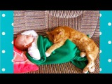Cutest Babies and Cats Sleeping Together | Top Cats Video Compilation
