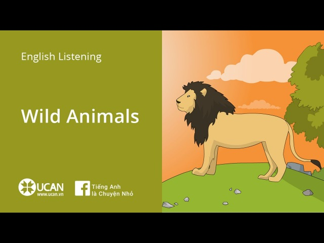 Learn English Listening | Beginner: Lesson 42. Wild Animals