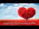 Самое прикольное поздравление с днем св. Валентина от Амурчика