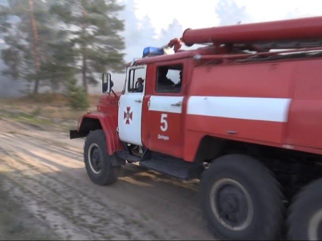 На Дніпропетровщині горіли ліси
