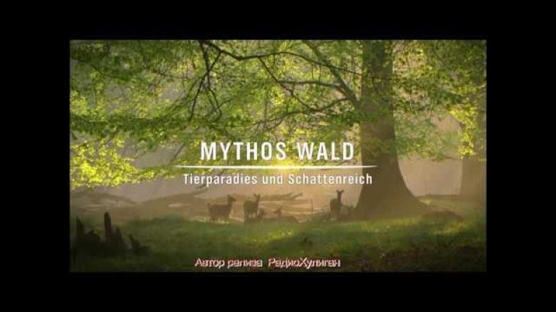 Мифы леса. Звериный рай и царство - 1 серия / Mythos Wald (2009)