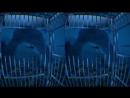 Погружение в клетке 3D VR SBS