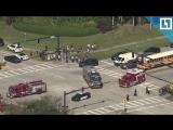 Стрельба в школе в Южной Флориде