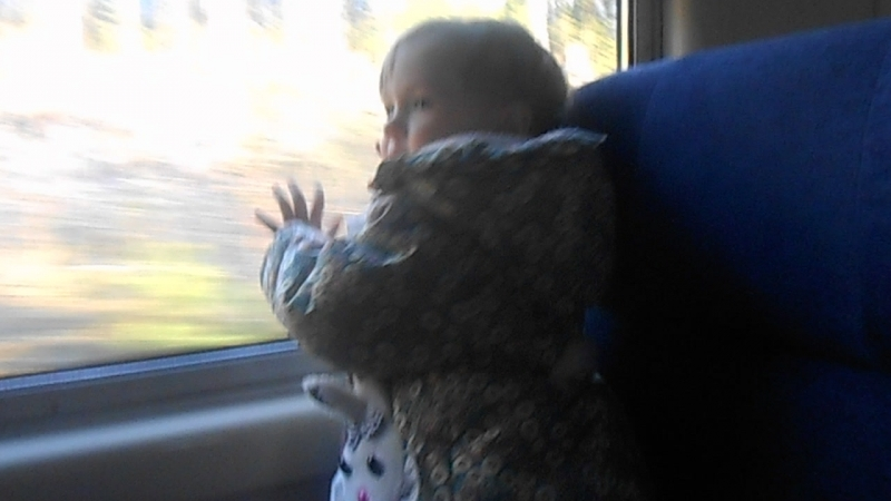 Даша путешественница.