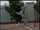Майк Тайсон играет с тигром ММА 95 БОИ БЕЗ ПРАВИЛ