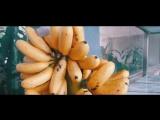 #Таиланд_АВРТур The Amazing BANGKOK, THAILAND ¦ Travel Video Summer2017