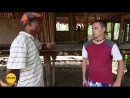 Папуа-Новая Гвинея, экспедиция Маклая. Зачем юноши-папуасы строят деревянные дома