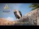 Assassin's Creed Origins Истоки Часть 2 Молотом по наковальне