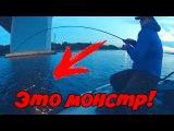 Вот это рыбалка! Этот монстр мне чуть удилище не сломал!