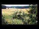 Творожное озеро Юные волны Unofficial Video