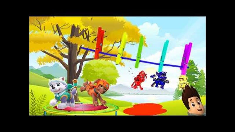 мультфильм про 5 героев из мультика щенячий патруль которые прыгали на батуте и окрасились в разные