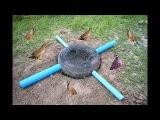 Easy Deep Hole Quail & Bird Trap Using PVC And Car Tire - Awesome Quail Trap By Car Tire And PVC