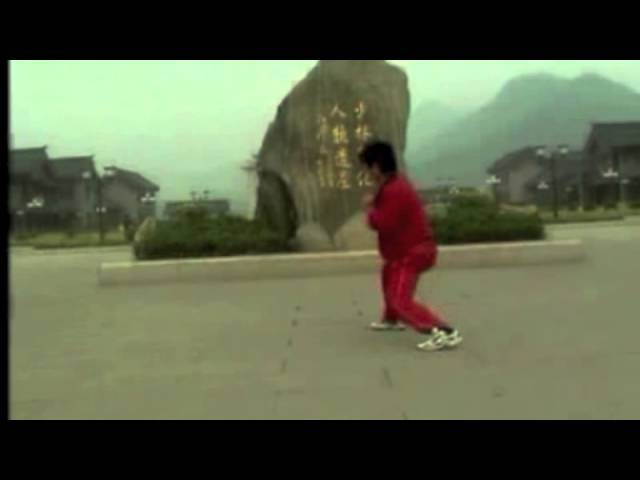 Ba Bu Lian Huan Quan 八步连环拳 performed by Shaolin kung fu master Fan Heng Shuai in Yangshuo, China