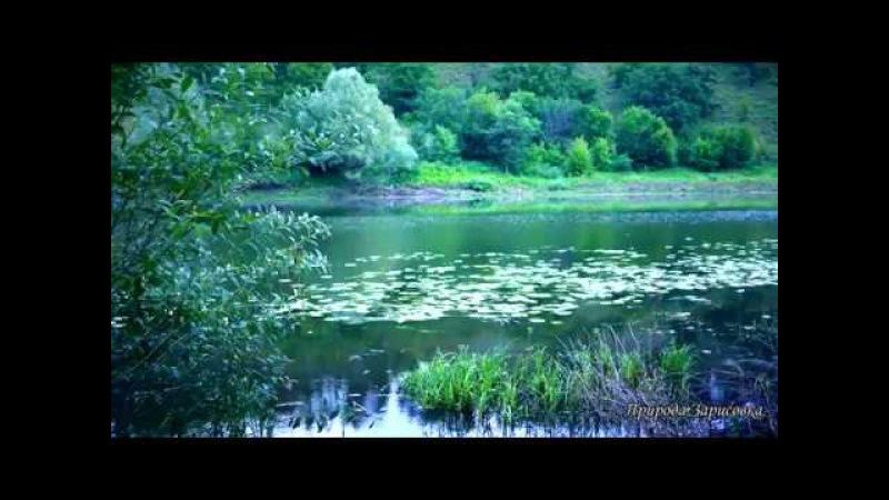 КРАСИВОЕ ВИДЕО...!! Утро, звуки природы, река, старое русло, пение птиц, релакс, при ...