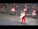 вариация из балета Щелкунчик Иван Васильев- К.Кретова, 29.12.2015г.