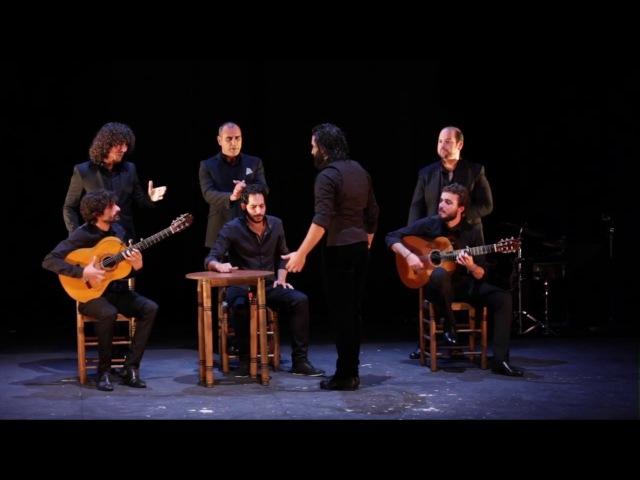 Antonio Molina El Choro bailaor Solea por Bulerias