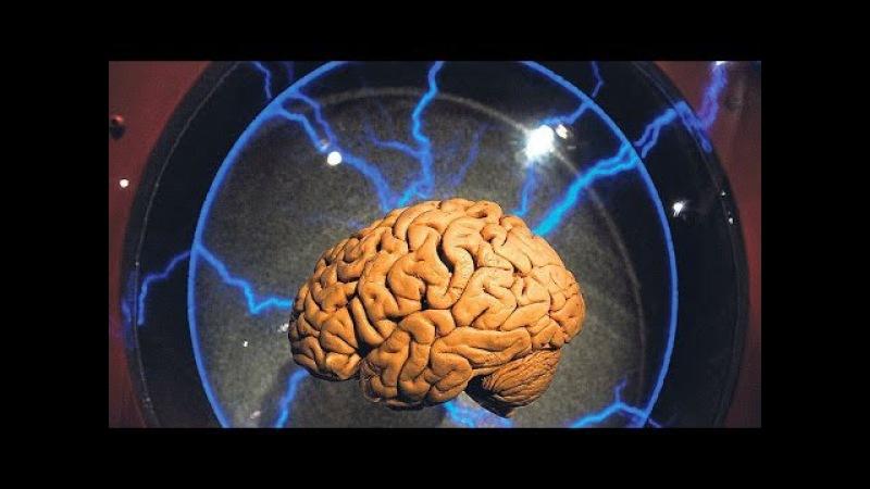 Невероятно! Сила мысли Допинг для мозга. Документальный фильм » Freewka.com - Смотреть онлайн в хорощем качестве