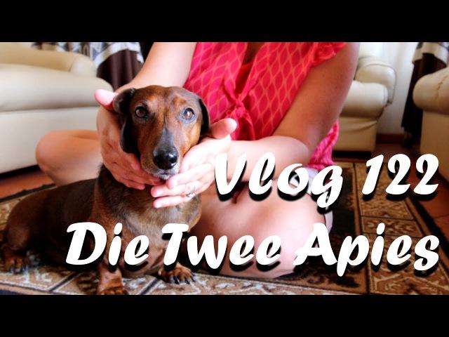 Die Twee Apies - The Daily Vlogger in Afrikaans
