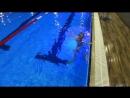 Игры в бассейне начинаются с поплавка и переходят в прятки от тренера