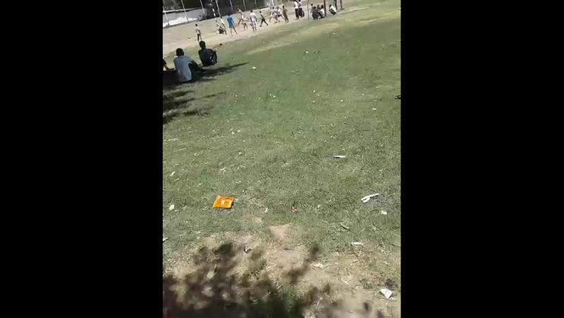 кто смотрит волейбол