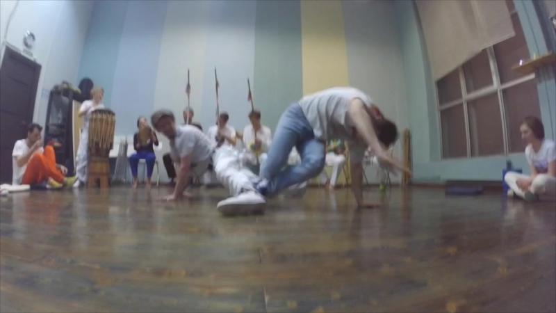 Cao Marrom e Alunos e Rei de Roma Palmares Angola Capoeira