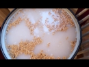 Бражка на диких дрожжах пшеницы